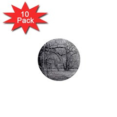 Black and White Forest 10 Pack Mini Magnet (Round)