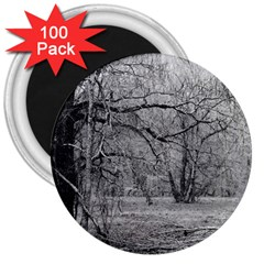 Black and White Forest 100 Pack Large Magnet (Round)