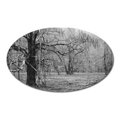 Black and White Forest Large Sticker Magnet (Oval)