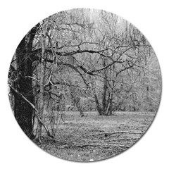 Black and White Forest Extra Large Sticker Magnet (Round)