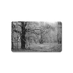 Black And White Forest Name Card Sticker Magnet