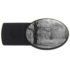 Black and White Forest 4Gb USB Flash Drive (Oval)
