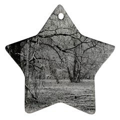 Black And White Forest Twin Sided Ceramic Ornament (star)