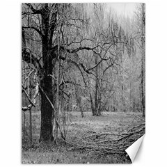 Black and White Forest 12  x 16  Unframed Canvas Print
