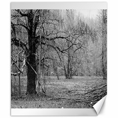 Black and White Forest 20  x 24  Unframed Canvas Print