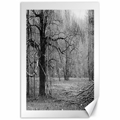 Black And White Forest 20  X 30  Unframed Canvas Print