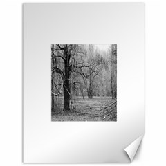 Black and White Forest 36  x 48  Unframed Canvas Print