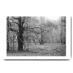 Black And White Forest Large Door Mat