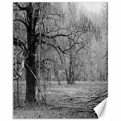 Black and White Forest 11  x 14  Unframed Canvas Print