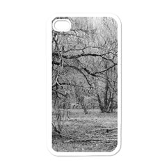 Black And White Forest White Apple Iphone 4 Case