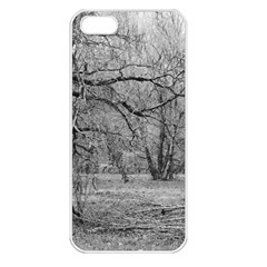 Black And White Forest Apple Iphone 5 Seamless Case (white)