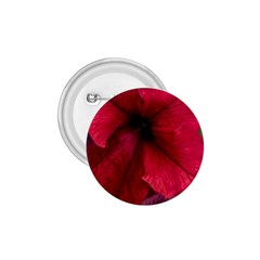 Red Peonies Small Button (Round)