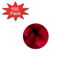 Red Peonies 100 Pack Mini Button (Round)