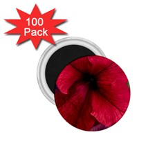 Red Peonies 100 Pack Small Magnet (Round)
