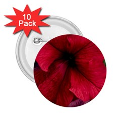 Red Peonies 10 Pack Regular Button (Round)