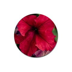 Red Peonies Large Sticker Magnet (Round)