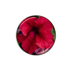 Red Peonies 4 Pack Golf Ball Marker (for Hat Clip)