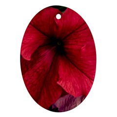 Red Peonies Oval Ornament (Two Sides)