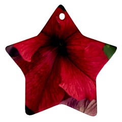 Red Peonies Twin-sided Ceramic Ornament (Star)