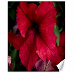 Red Peonies 16  x 20  Unframed Canvas Print
