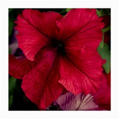 Red Peonies Twin-sided Large Glasses Cleaning Cloth