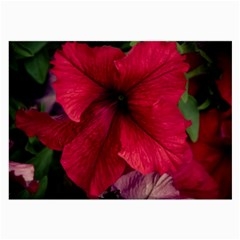 Red Peonies Twin Sided Handkerchief