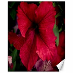 Red Peonies 11  X 14  Unframed Canvas Print