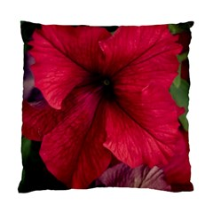 Red Peonies Twin Sided Cushion Case
