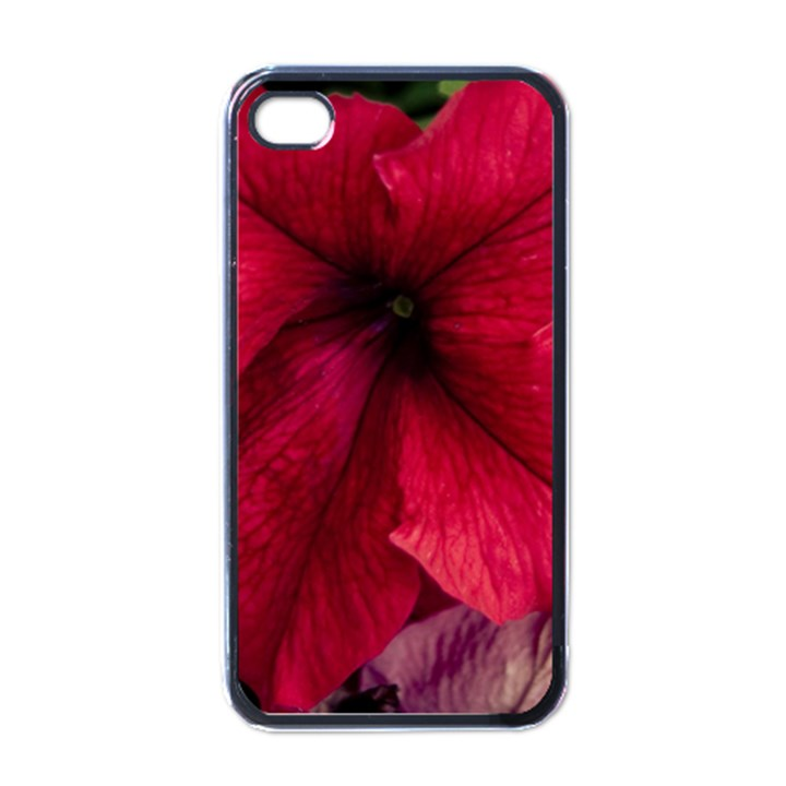 Red Peonies Black Apple iPhone 4 Case