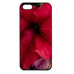 Red Peonies Apple iPhone 5 Seamless Case (Black)