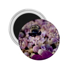 Flying Bumble Bee Regular Magnet (Round)