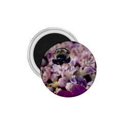 Flying Bumble Bee Small Magnet (Round)