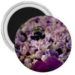 Flying Bumble Bee Large Magnet (Round)