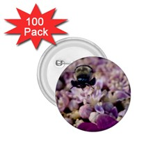 Flying Bumble Bee 100 Pack Small Button (Round)