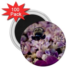 Flying Bumble Bee 100 Pack Regular Magnet (Round)