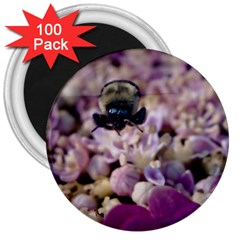 Flying Bumble Bee 100 Pack Large Magnet (Round)
