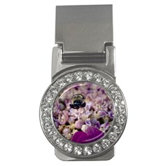 Flying Bumble Bee Money Clip with Gemstones (Round)