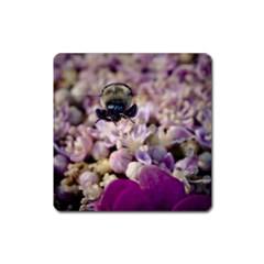 Flying Bumble Bee Large Sticker Magnet (Square)