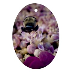 Flying Bumble Bee Oval Ornament (two Sides)