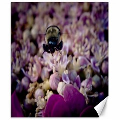 Flying Bumble Bee 8  x 10  Unframed Canvas Print