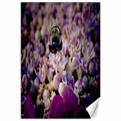 Flying Bumble Bee 12  x 18  Unframed Canvas Print