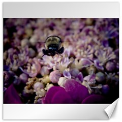 Flying Bumble Bee 20  x 20  Unframed Canvas Print