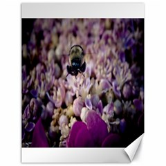 Flying Bumble Bee 18  x 24  Unframed Canvas Print
