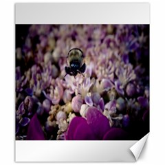 Flying Bumble Bee 20  x 24  Unframed Canvas Print