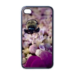 Flying Bumble Bee Black Apple iPhone 4 Case
