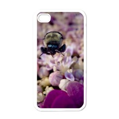 Flying Bumble Bee White Apple iPhone 4 Case
