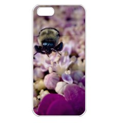 Flying Bumble Bee Apple iPhone 5 Seamless Case (White)