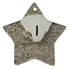Quarter of a Sand Dollar Twin-sided Ceramic Ornament (Star)