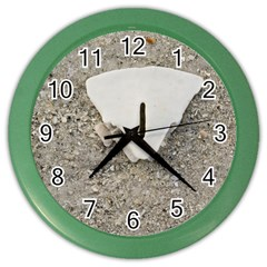 Quarter of a Sand Dollar Colored Wall Clock