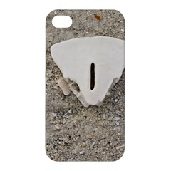 Quarter of a Sand Dollar Apple iPhone 4/4S Premium Hardshell Case